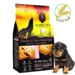אמברוסיה, מזון מלא לגורי כלבים מכל הגזעים, נטול דגנים, עוף ודג לבן טרי – Ambrosia Puppy