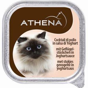 אתנה מעדן פטה בטעם עוף ביוגורט לחתול,100 גרם