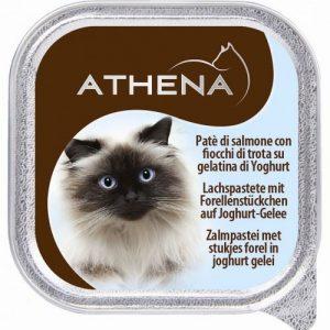 אתנה מעדן פטה סלמון ונתחי פורל ביוגורט לחתול,100 גרם
