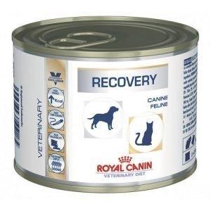 מעדן רויאל קנין מזון רפואי ריקברי לכלב ולחתול 195 גרם Royal Canin Recovery