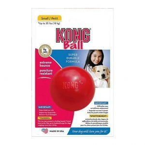 משחק לכלב כדור קונג קטן Small KONG Ball